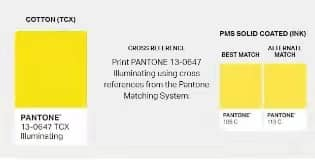 yellow cotton of pantone