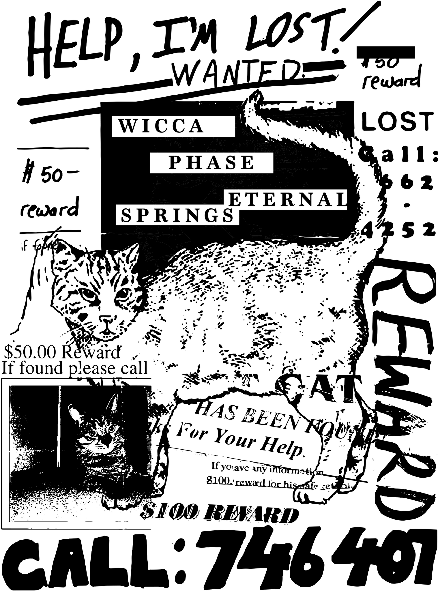 WICCA PHASE SPRINGS ETERNAL - Lost Cat Sticker