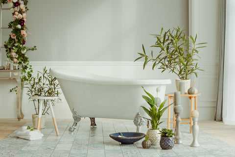 Plants next to a claw white bathtub