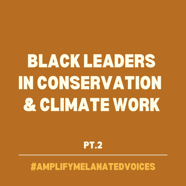 Wildlife Weekly Round Up + More Black Leaders In Conservation 💚