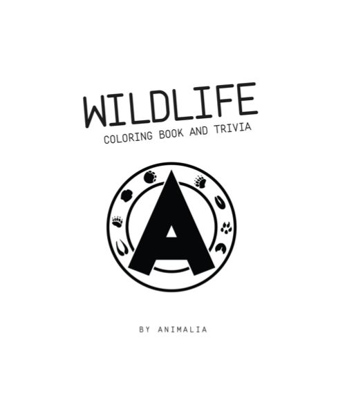 Animalia Coloring & Trivia Book [PDF]