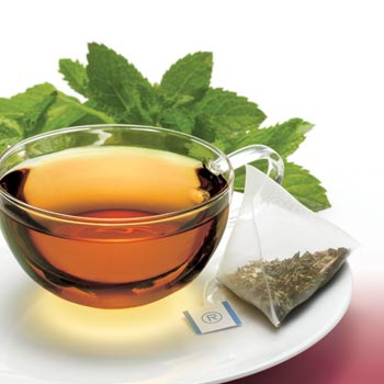 Revolution Organic Mint Pu-erh Tea
