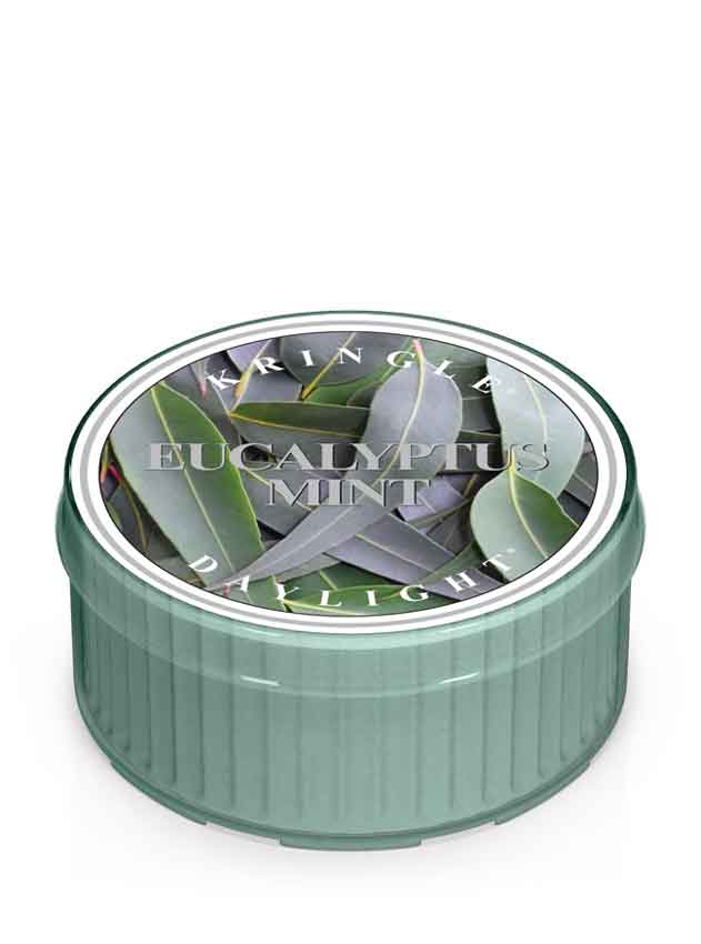 Eucalyptus Mint - Kringle Candle Store