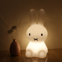 Load image into Gallery viewer, Bunny Night Light, Night light - All Things Babies