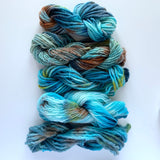 Hand-dyed Yarn Skein Turquoise