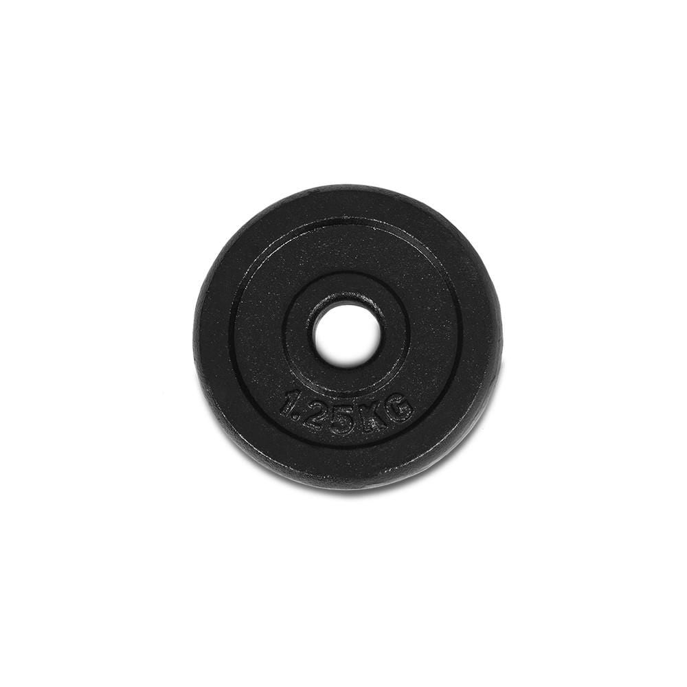 Cast Iron Weight Plate 1.25kg x 4 Afterpay Buy Now Australia Fitness at home