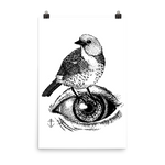 JAYE JAYLE Bird Of My Eye Print