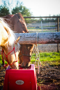 Savvy Feeder in Red: Slow feeder for horse hay to help horses eat naturally