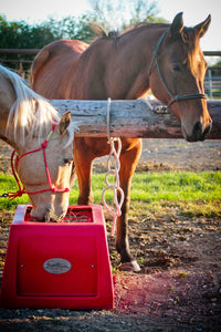 Red Savvy Feeder: Slow feeder for horse hay to help horses eat naturally