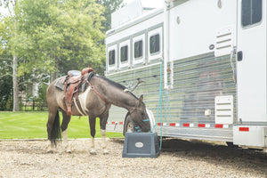 Gray Savvy Feeder slow feeder for horses #qthehorse