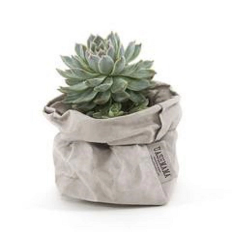 Uashmama Paper Bag Baskets