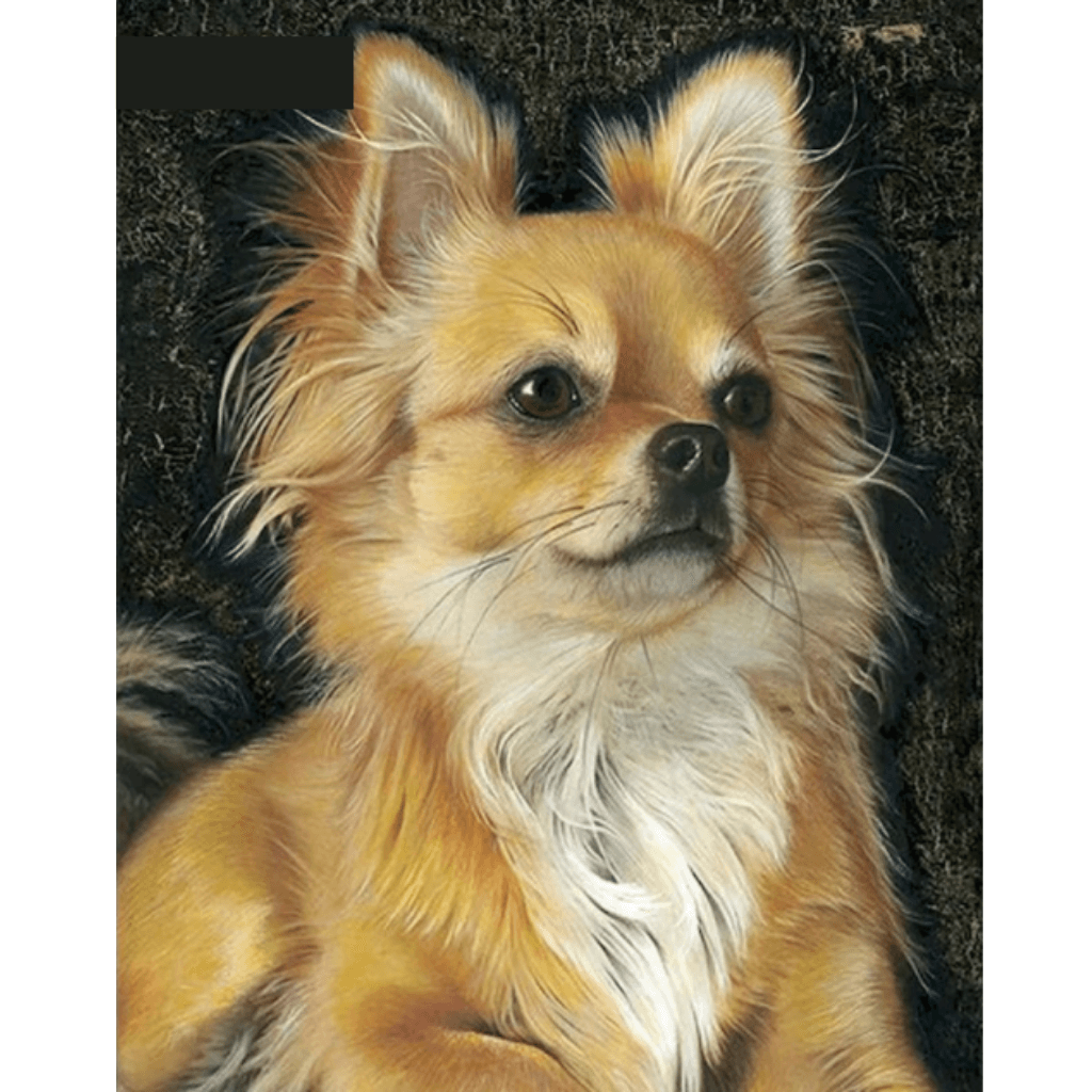 Dog - Paint By Numbers Kit For Adults - Easy Paint By Numbers - DIY Animals