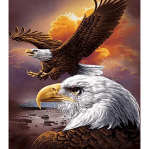 Two Eagles - Paint By Numbers Kit For Adults - Easy Paint By Number Kits for adults- DIY Animals