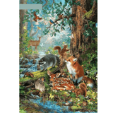 Forest And Animal - Paint By Numbers Kit For Adults - Easy Paint By Number Kits for adults- DIY Animals