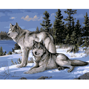 Waiting Wolfs - Paint By Numbers Kit For Adults - Easy Paint By Numbers - DIY Animals