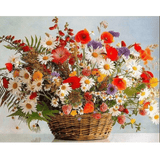 Vivid Flowers - Paint By Numbers Kit For Adults - Easy Paint By Numbers - DIY Flowers