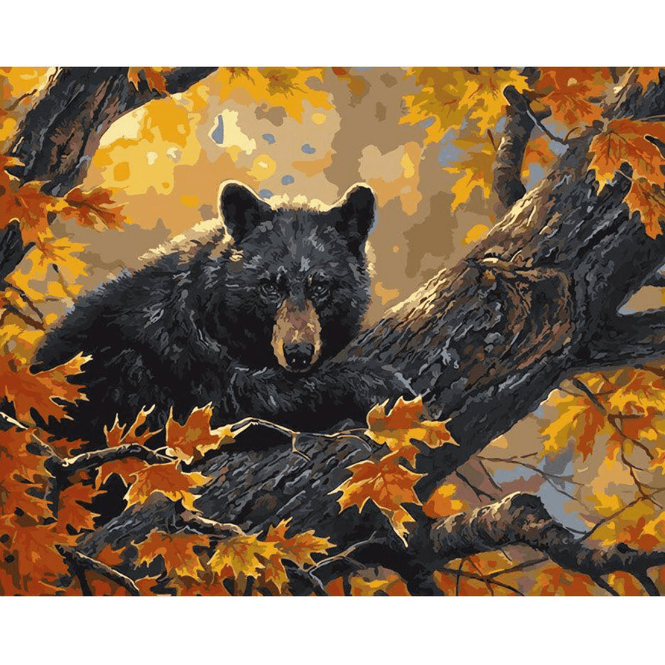 Waiting Bear - Paint By Numbers Kit For Adults - Easy Paint By Number Kits for adults- DIY Animals