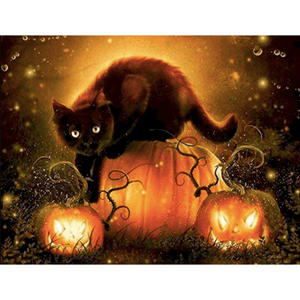 Black Cat And Pumpkin - Paint By Numbers Kit For Adults - Easy Paint By Number Kits for adults- DIY Animals