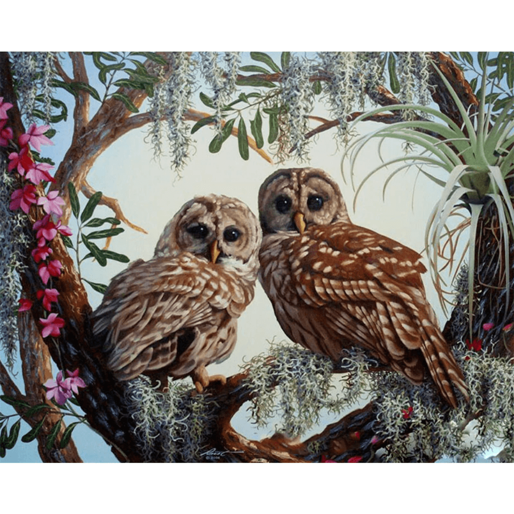 Owl Lovers - Paint By Numbers Kit For Adults - Easy Paint By Numbers - DIY Love