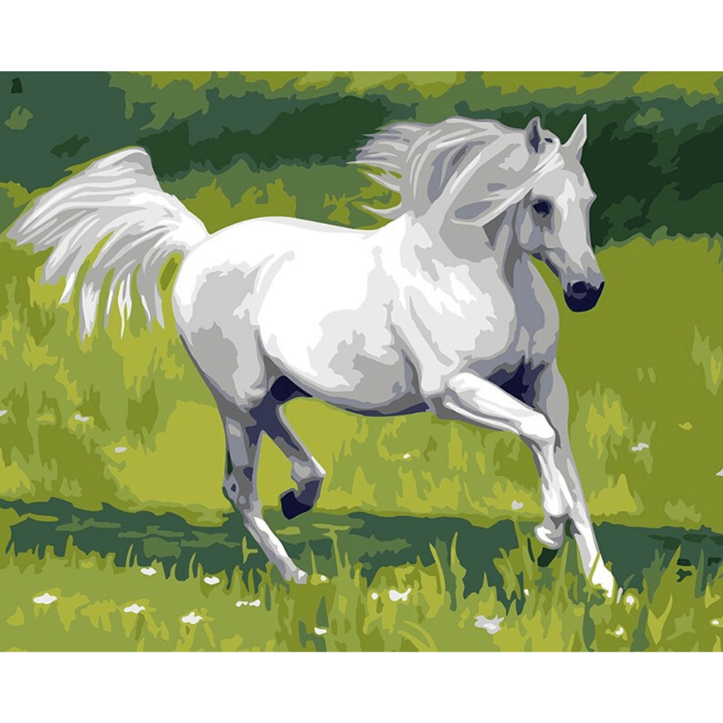 White Running Horse Paint By Numbers Kit For Adults Easy Paint By Numbers