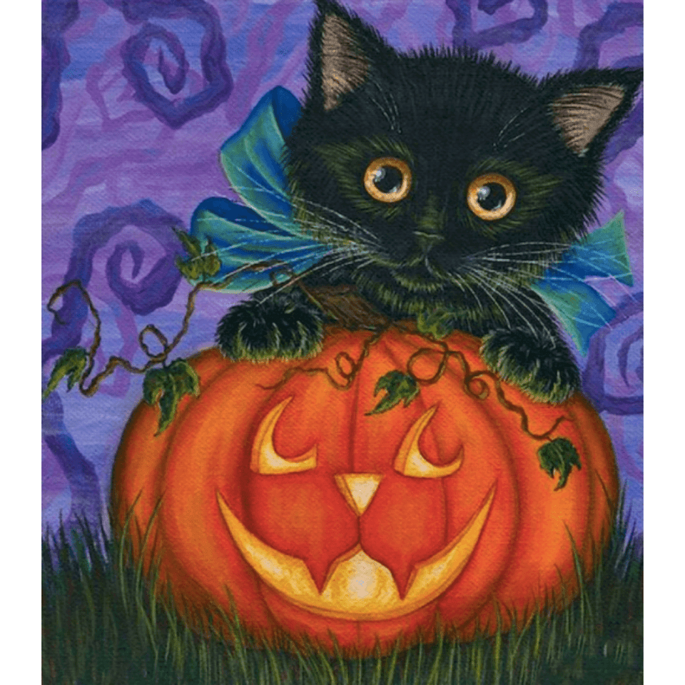 Black cat Pumpkin - Paint By Numbers Kit For Adults - Easy Paint By Number Kits for adults- DIY Animals