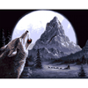 Wolf Howl - Paint By Numbers Kit For Adults - Easy Paint By Number Kits for adults- DIY Snow