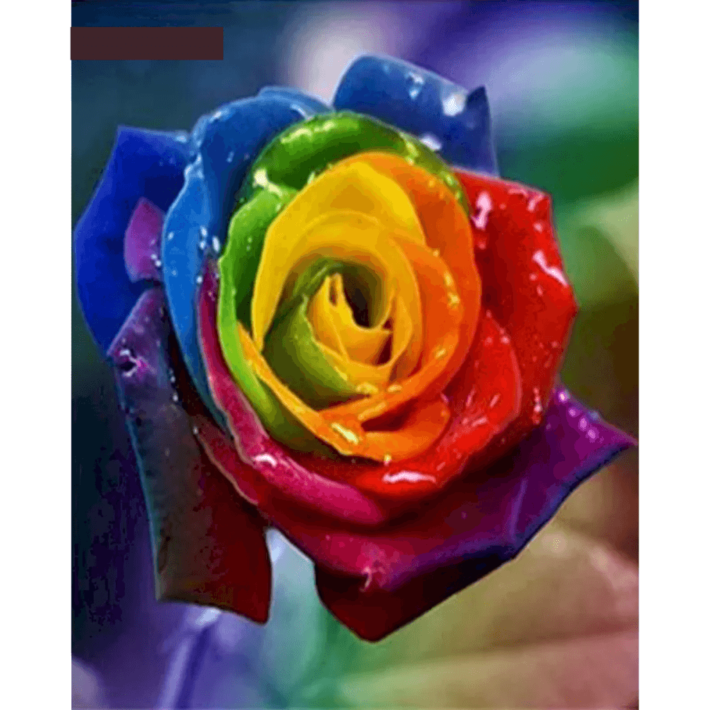 Colorful Flower - Paint By Numbers Kit For Adults - Easy Paint By Numbers - DIY Flowers