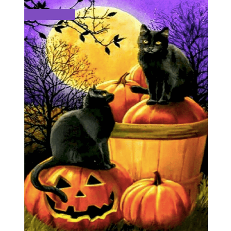 Lantern Cat - Paint By Numbers Kit For Adults - Easy Paint By Numbers - DIY Land