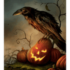 Bird On Evil Pumpkin - Paint By Numbers Kit For Adults - Easy Paint By Number Kits for adults- DIY Land