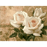 Three White Roses - Paint By Numbers Kit For Adults - Easy Paint By Number Kits for adults- DIY Flowers