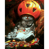 Cat With Pumpkin - Paint By Numbers Kit For Adults - Easy Paint By Number Kits for adults- DIY Land