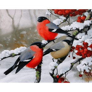Birds in Snow - Paint By Numbers Kit For Adults - Easy Paint By Numbers - DIY Snow