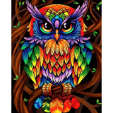 Colorful Owl - Paint By Numbers Kit For Adults - Easy Paint By Number Kits for adults- DIY Animals