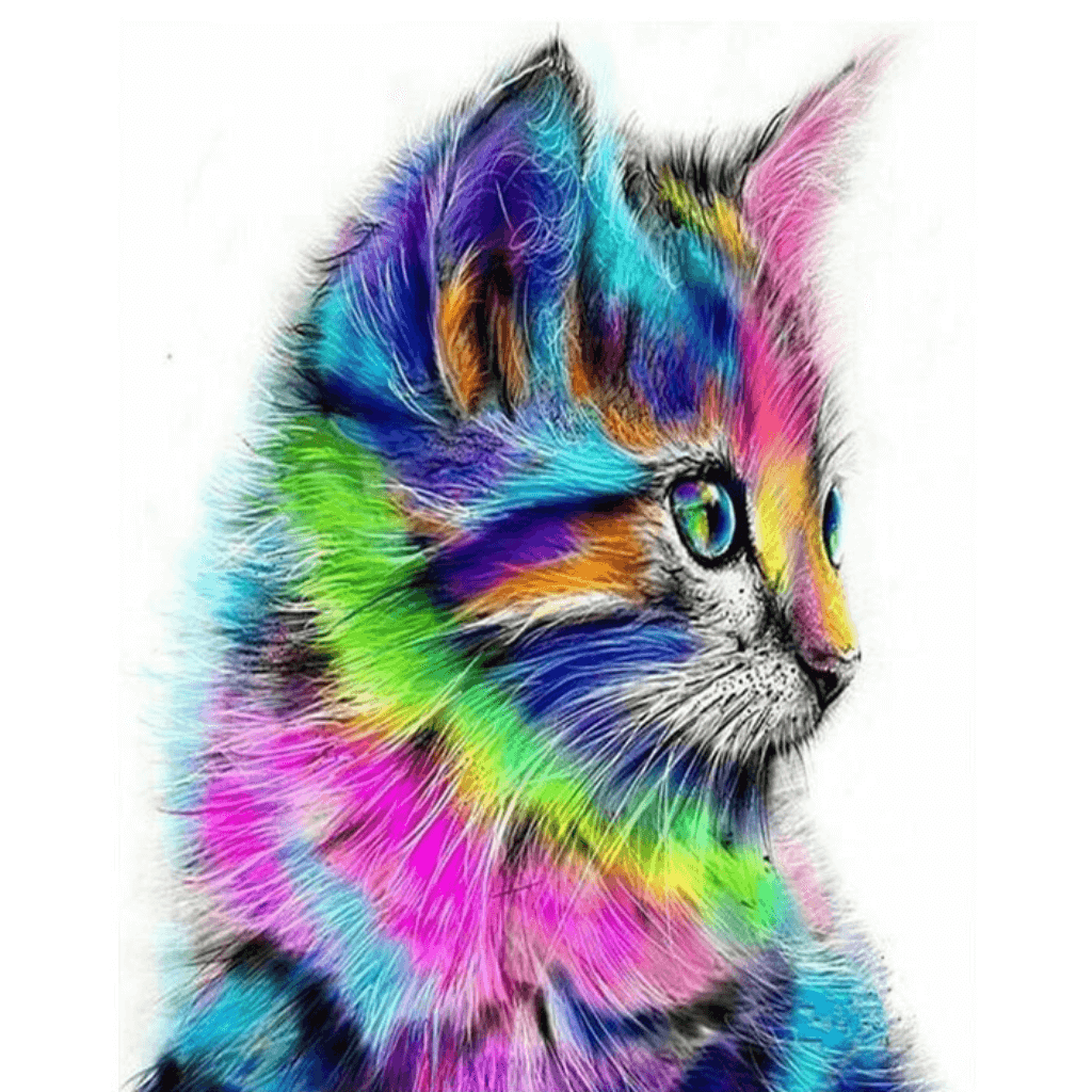 Colorful Cat - Paint By Numbers Kit For Adults - Easy Paint By Numbers - DIY Objects