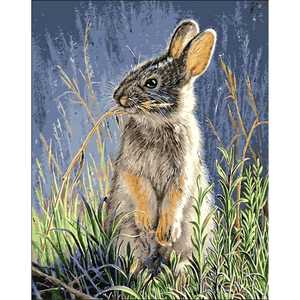 Cute Bunny - Paint By Numbers Kit For Adults - Easy Paint By Numbers - DIY Animals