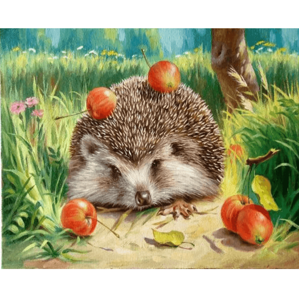 Hedgehog - Paint By Numbers Kit For Adults - Easy Paint By Number Kits for adults- DIY Animals