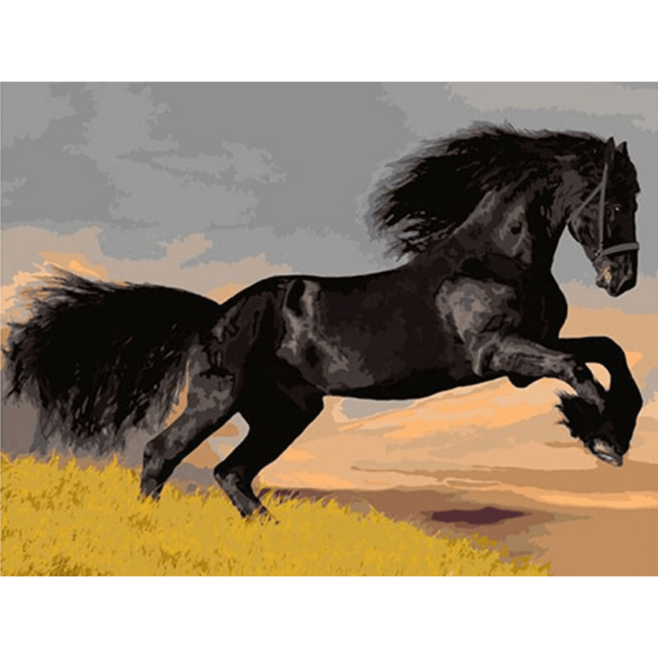 Horse Beauty - Paint By Numbers Kit For Adults - Easy Paint By Numbers - DIY Animals