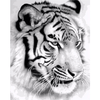 Lonely Tiger - Paint By Numbers Kit For Adults - Easy Paint By Number Kits for adults- DIY Animals
