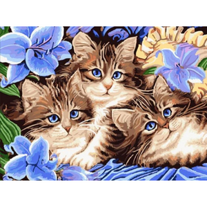 3 Cats - Paint By Numbers Kit For Adults - Easy Paint By Numbers - DIY Animals