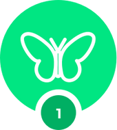 Butterfly Icon with Chapter One