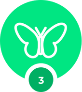 Buttonfly icon showing chapter 3