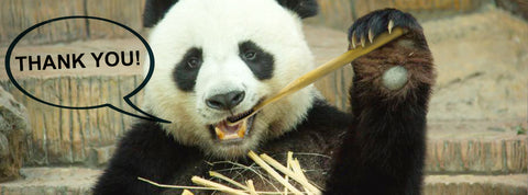 Panda greatings, bamboo brush, plastic free, environmental friendly, plastic-free, plastic pollution