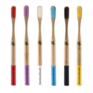 Turtle Pack 6x Coloured Bamboo Brushes +1 FREE BAMBOO STRAW