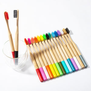 Pack 12x Bamboo Brushes (3x orange, 3x blue, 3x green, 3x pink) +1 FREE BAMBOO STRAW