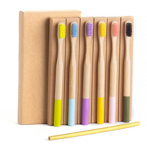Pack 12x Coloured Bamboo Brushes +1 FREE BAMBOO STRAW