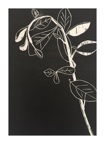 Botanical Prints for sale