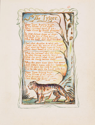 William Blake tyger tyger poem