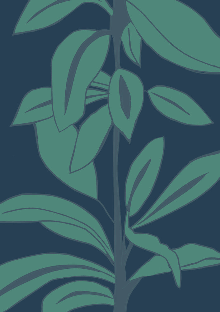 Giclée Print Rubber Plant - Leaves at Midnight