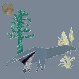 The Anteater - Anteaters Breath - Annika Reed Studio