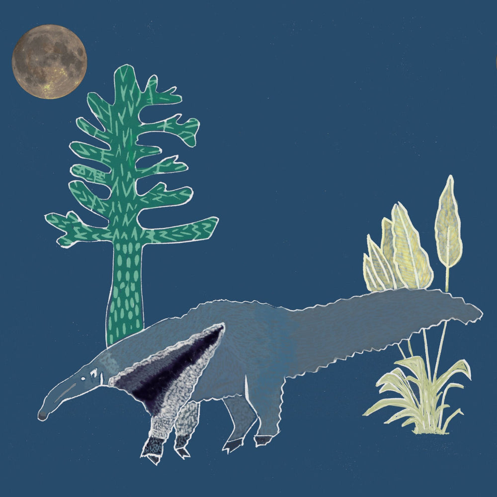 Giclée Print The Anteater - Midnight Blue